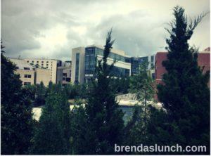 Duke University West Campus Durham, NC 5 Tips for Graduate School Success