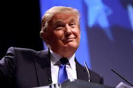Donald Trump [Photo Courtesy: Wikimedia Commons] brendaslunch politics healthcare obamacare fixobamacare